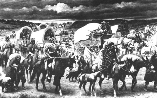 Indian Removal @